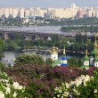 Stock Photo: Kyiv Botanic Garden in spring