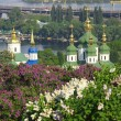 Kyiv Botanic Garden in spring — Stock Photo