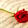 Musical notes and red rose — Stock Photo