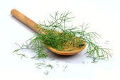 Wooden spoon with dill — Stock Photo