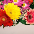 Herbera bouquet - Stock Photo