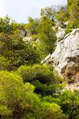 Mount Olympus - highest peak in Greece — Stock Photo