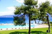 Tropical swimming pool near the beach — Stock Photo