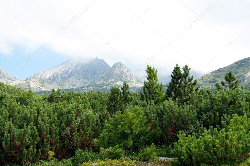 Mountains landscape.High Tatras Slovakia — Stock Photo #2900758