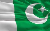 Waving flag of Pakistan — Stock Photo