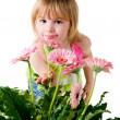 little girl with the wlowers — Stock Photo