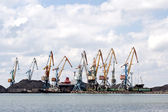 Seaport with the tower cranes — Stock Photo