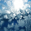 Stock Photo: Frost and sun pattern