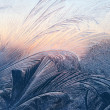 Stock Photo: Frost and sunlight texture