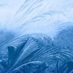 textura helada — Foto de Stock