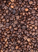 Background of coffee bean — Stock Photo