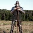 Stock Photo: Medieval knight