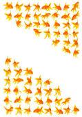 Goldfishes — Foto Stock