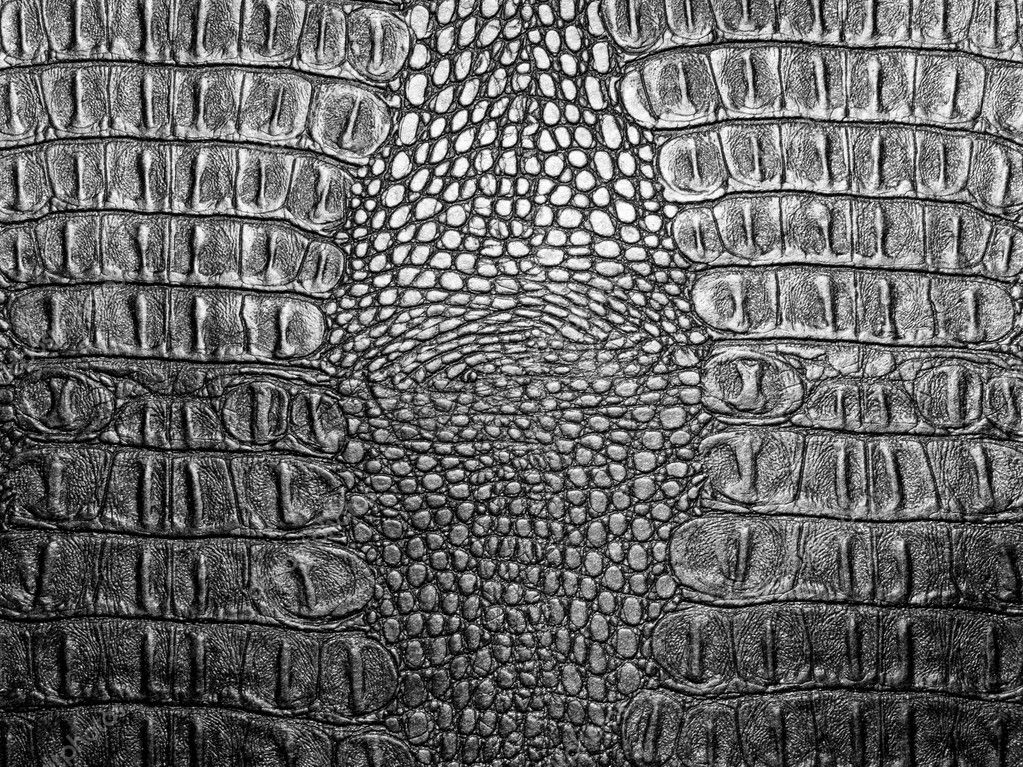 Black crocodile leather texture closeup background. — Stock Photo #2943941