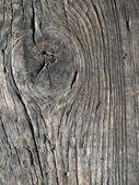 Drewno. — Zdjęcie stockowe