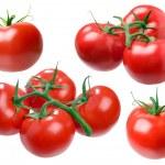 Tomato. — Stock Photo #3328916