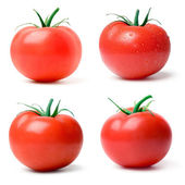 томатный. — Стоковое фото
