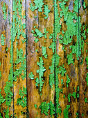 Green fence. — Fotografia Stock