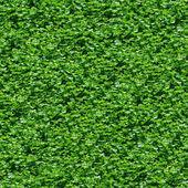 Seamless green grass pattern. — Stock Photo