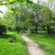 Park landscape in spring - Stock Photo