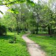 Park landscape in spring — Stock Photo #3349618