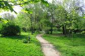 Parkera landskap under våren — Stockfoto