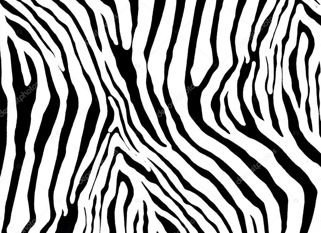 zebra as  pattern — Stock Photo #3346409