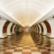 Tunnel of metro station - Stock Photo