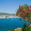 Sea landscape in Bodrum, Aegean Sea - Stock Photo