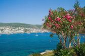 Sea landscape in Bodrum, Aegean Sea — Stock Photo