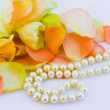 Roses petals and pearl — Stock Photo