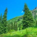 Mountain landscape Central Asia. — Stock Photo