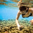 Stock Photo: Snorkeler. Red sea