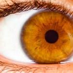 Human eye close up ... — Stock Photo