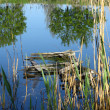 Stock Photo: Broken wooden bridge in small pond