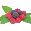 Stock Photo: Raspberry and blackberry fruit with green leaves