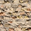 Old wall — Stock Photo #4452123