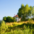 Landscape with trees and house. - Photo