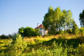 Landscape with trees and house. — Stok fotoğraf