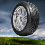 Wheel with steel rim — Stock Photo #4565101
