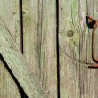 Close-up of very old green door with a rusty hook - Stockfoto