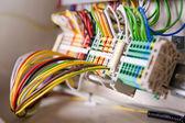 много сетевых кабелей — Стоковое фото