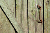 Close-up of very old green door with a rusty hook — Stock Photo