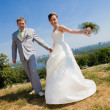 Groom and bride — Stock Photo #4708579