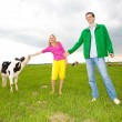 Couple in love of play with a little calf in the field — Stock Photo