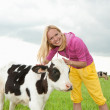Girl play with a little calf in the field — Stock Photo #4709289
