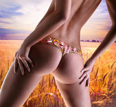 Girl with a flower underwear. Golden wheat ready for harvest gro — Stock Photo
