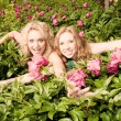 Two young womans relaxing on a garden — Stock Photo #4711242