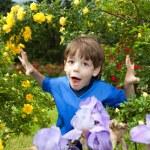 Happy boy enjoy on Flowers — Stock Photo #4711425