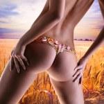 Девушка с цветком белье. Пшеница золотая готовы для урожая ГРУ — Стоковое фото